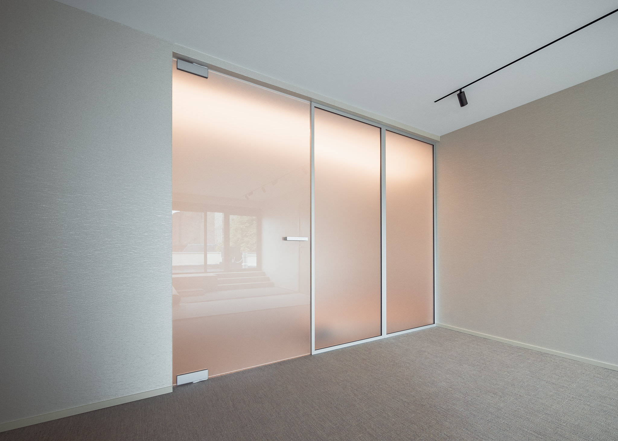 Glass pivot door with fixed glass partitions alongside