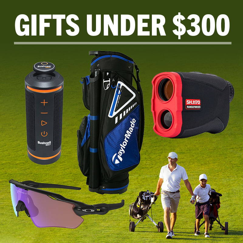 Fathers Day Gifts Under $300