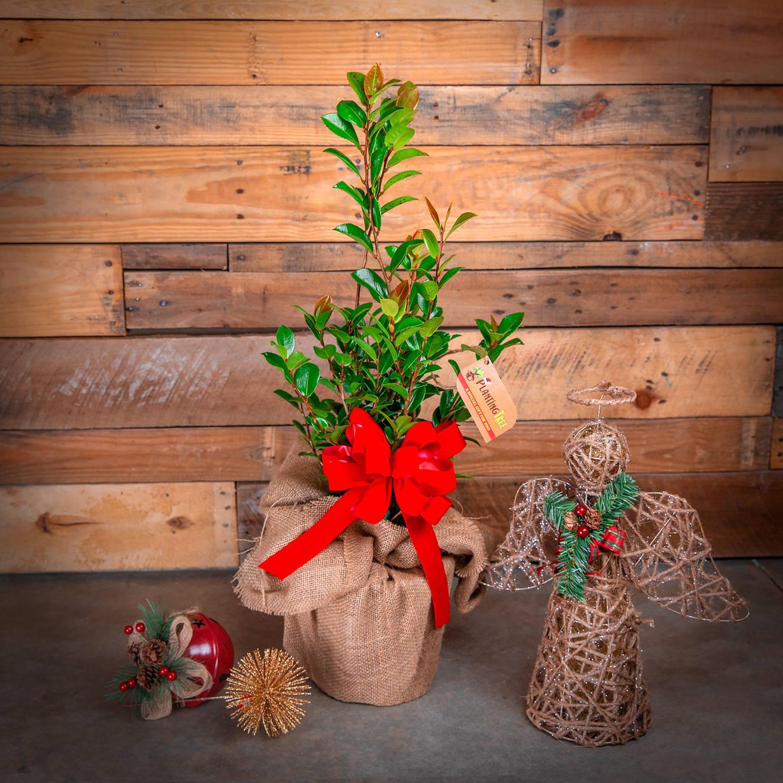 Tabletop Christmas Tree - October Magic Inspiration Camellia