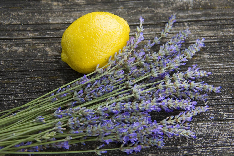 Lemon Lavender Infusions