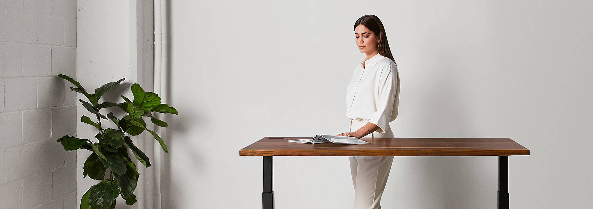 Sway walnut sit-stand desk - ergonofis