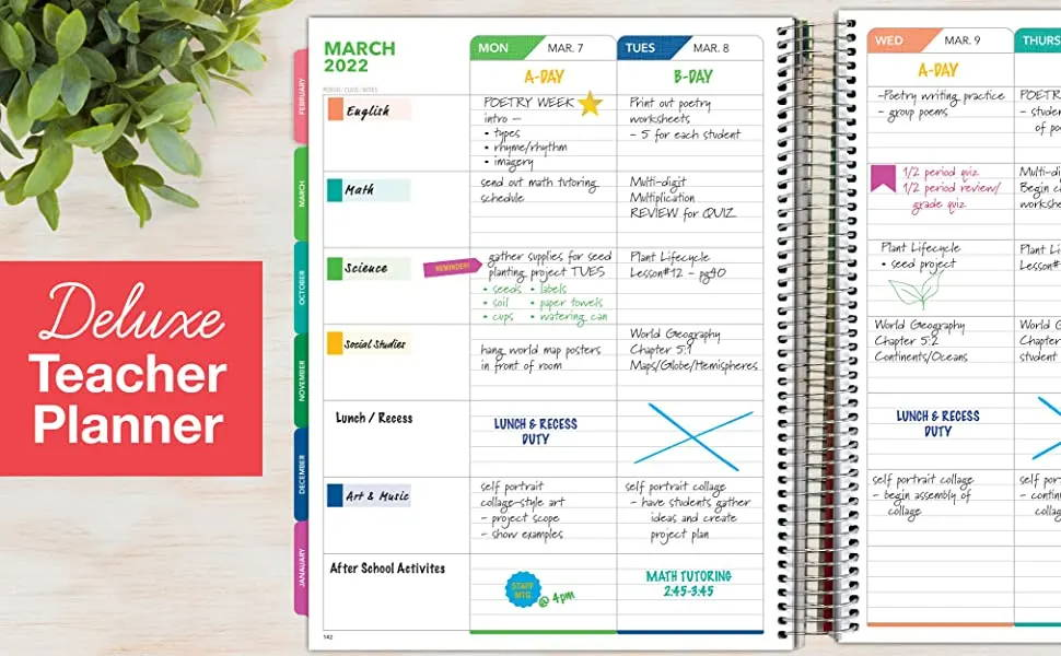 Image of a Deluxe Teacher Planner Layout