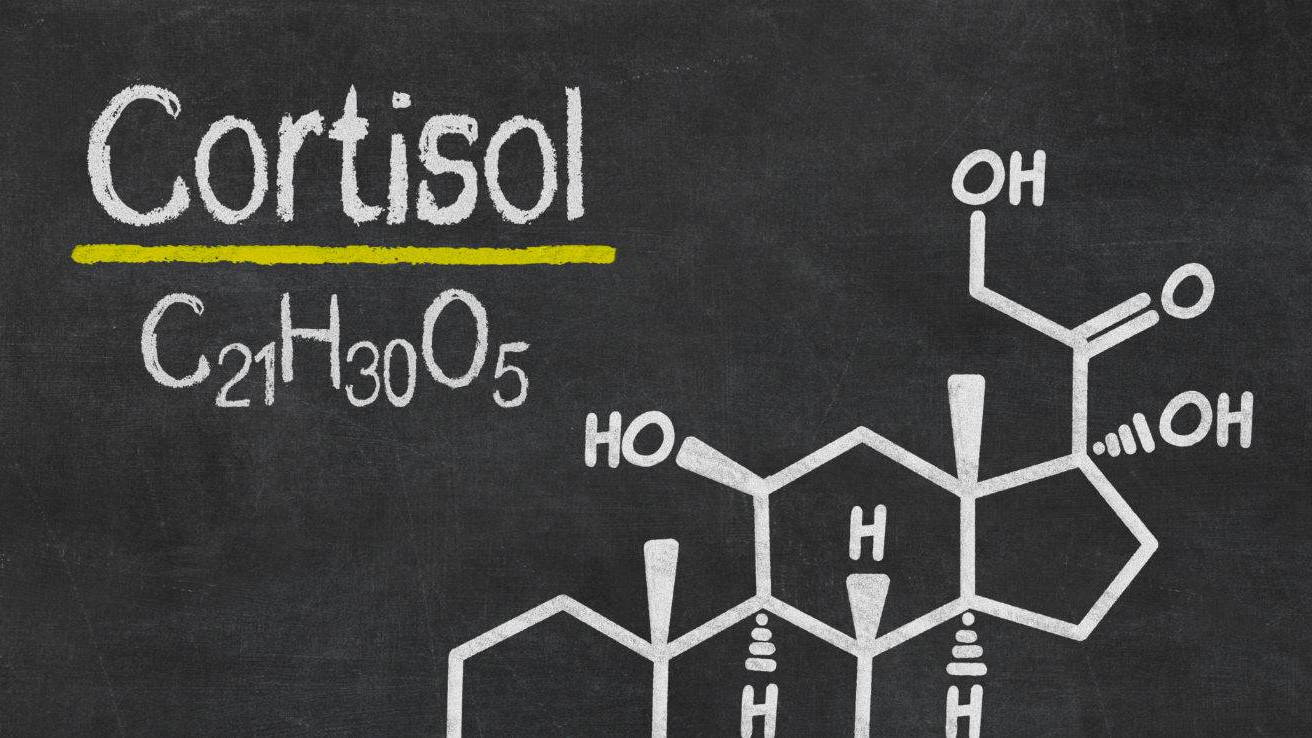 cortisol level keto
