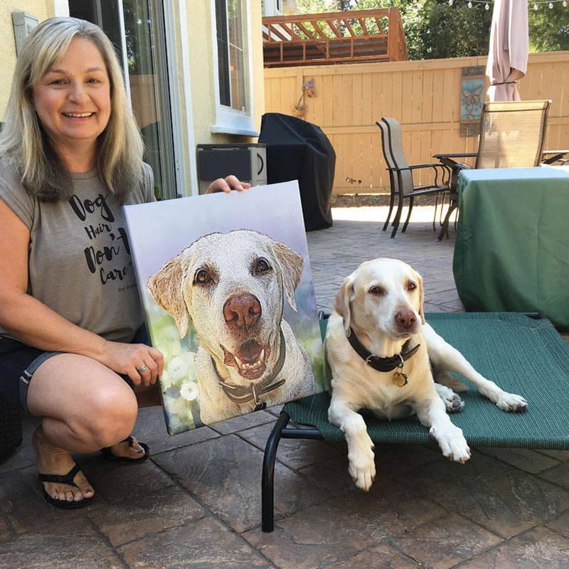 dog portrait - labrador