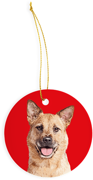 Custom red christmas ornament with dog