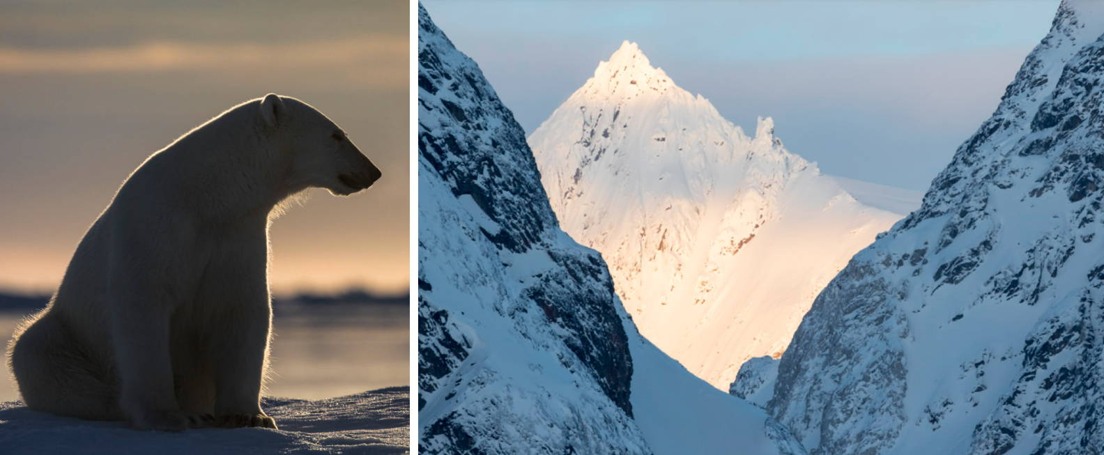 Landscape of Svalbard Norway Wildlife photography tour and expeditions