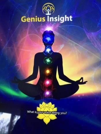 Genius Insight App on an IPad