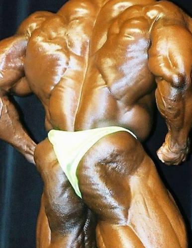 Ronnie Coleman 2001 Arnold Schwarzenegger classic rare bodybuilding photo gallery