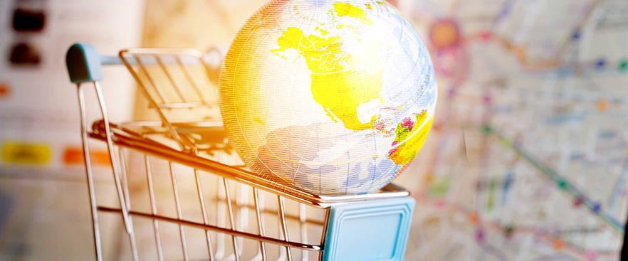 Globe in a shopping cart