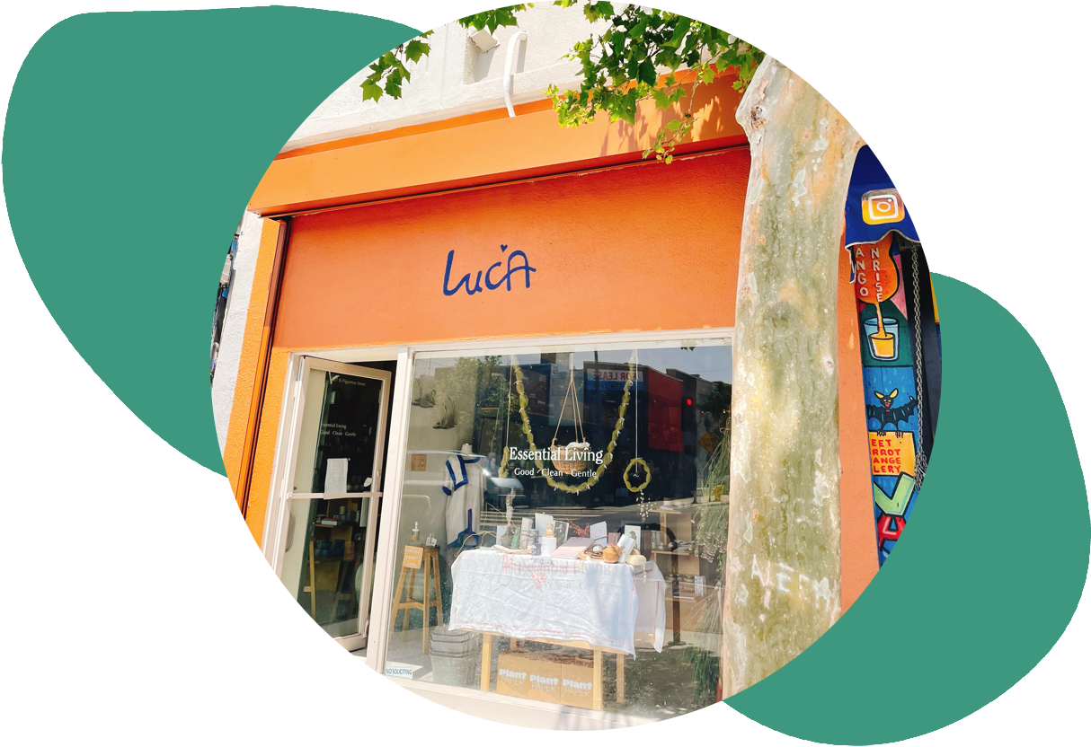 circular photo of luca essential living's storefront over abstract green shapes