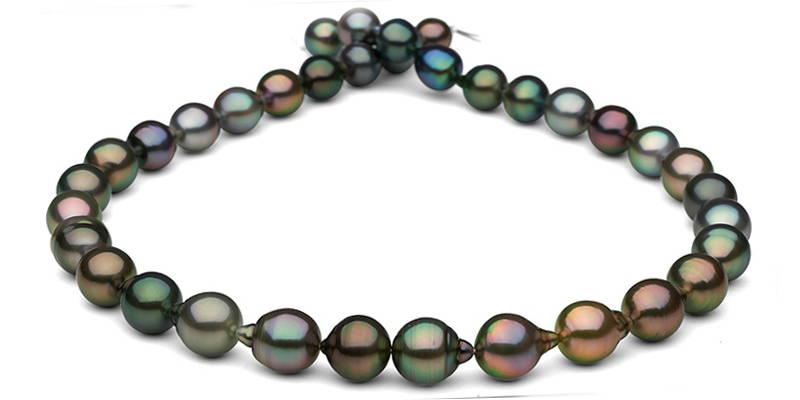 Pearl Colors: Multi-Color Tahitian Pearls