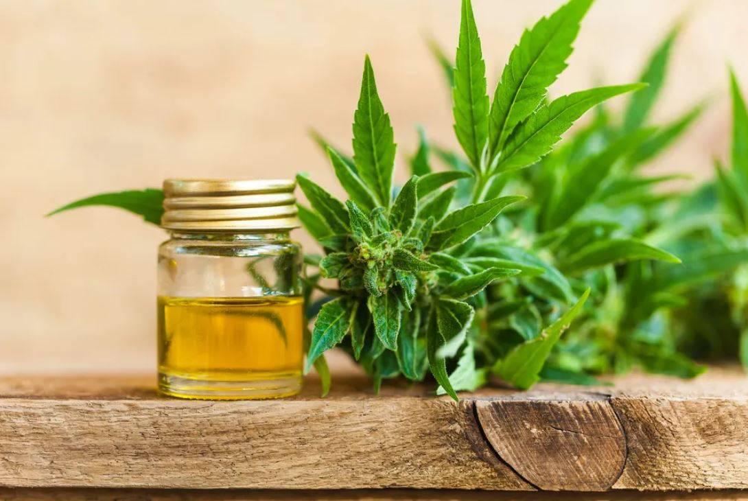cbd oil for cancer symptoms