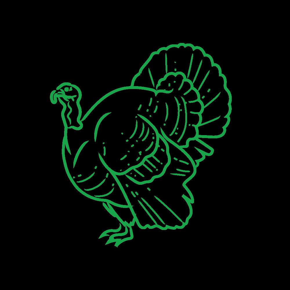 Humanely Raised Turkey