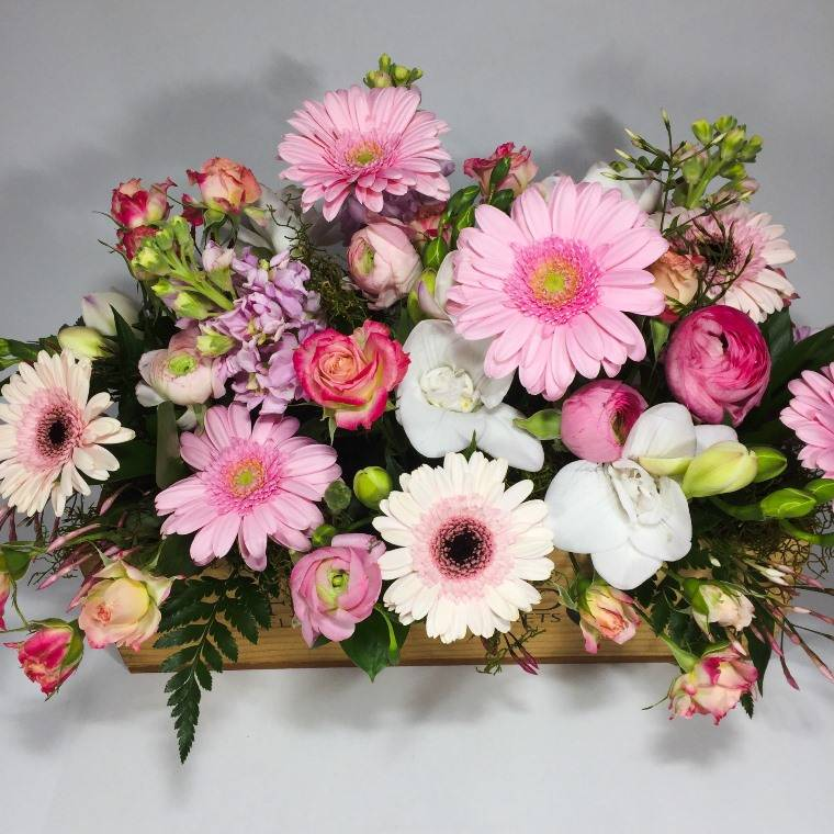 Upper Hutt cottage garden filled with gerberas
