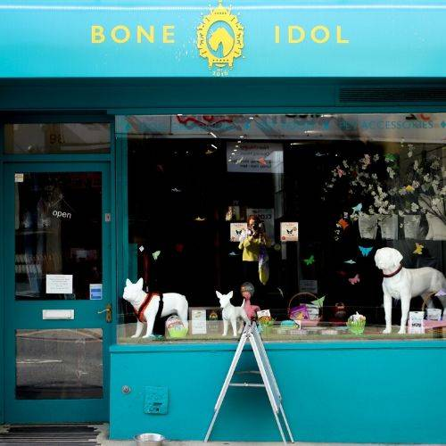 Bone Idol Brighton, Brighton Dog Groomers, Bone Idol, Dog Collars, Dog Leads, Dog Food, St James's Street,