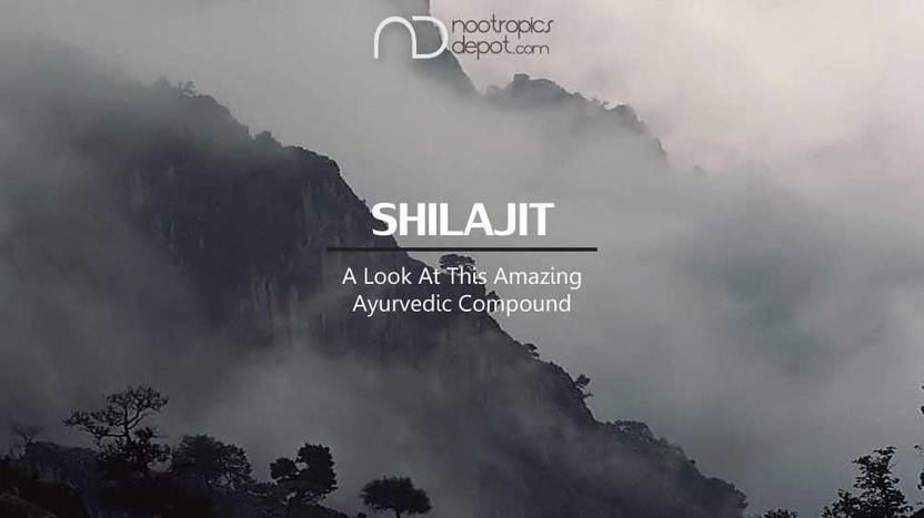 A Look At PrimaVie Shilajit Extract