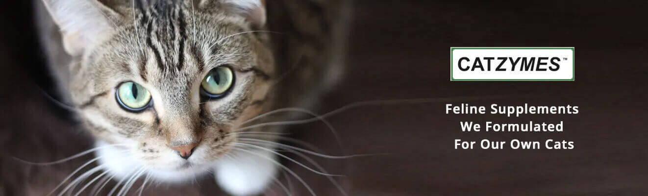 Feline supplements