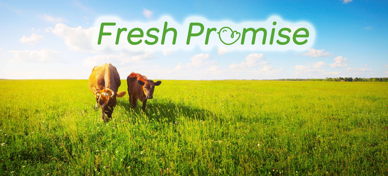 BabyKind Market Fresh Promise
