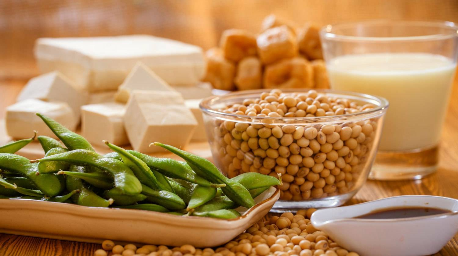 Featured | Soy bean, tofu and other soy products | Soy Lecithin Side Effects and Why You Should AVOID It