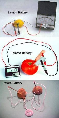 Lemon Battery, Tomato Battery and Potato Battery