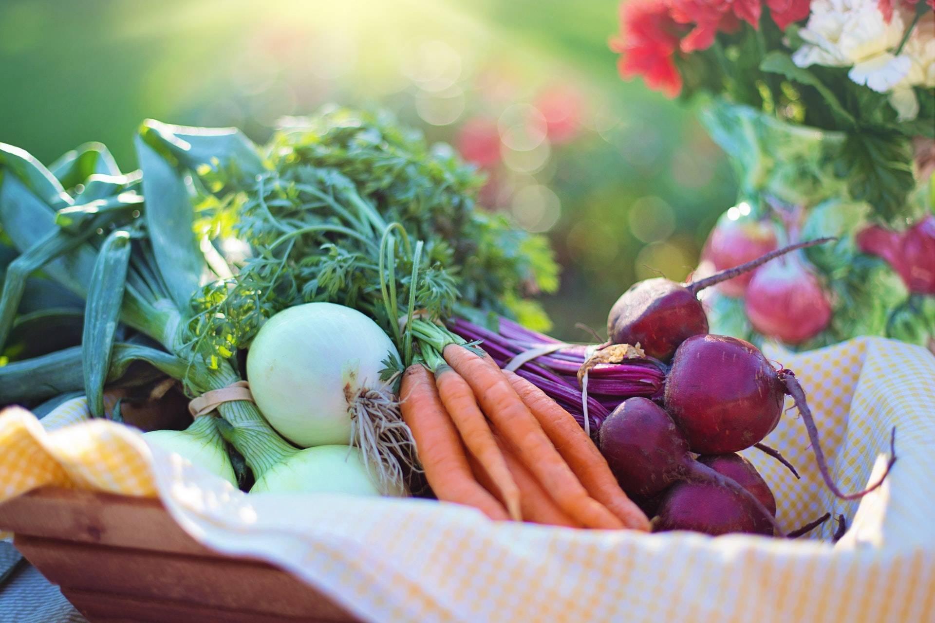 Fresh vegetables for 420 receipes