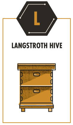 Langstroth Hive