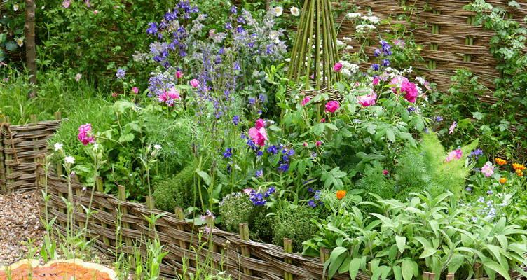 Massif de fleurs et d'herbes