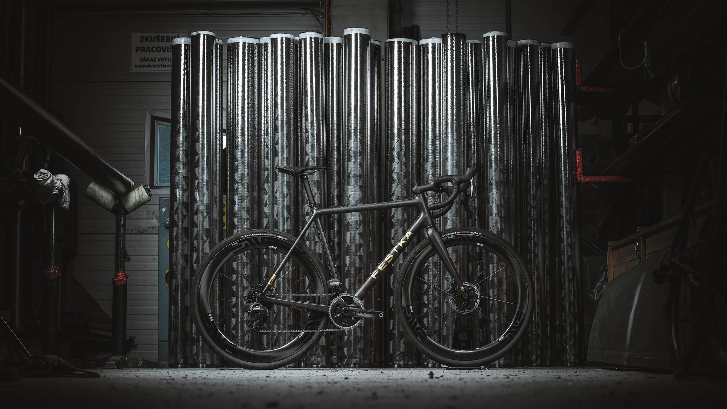 FESTKA Carbon Bike