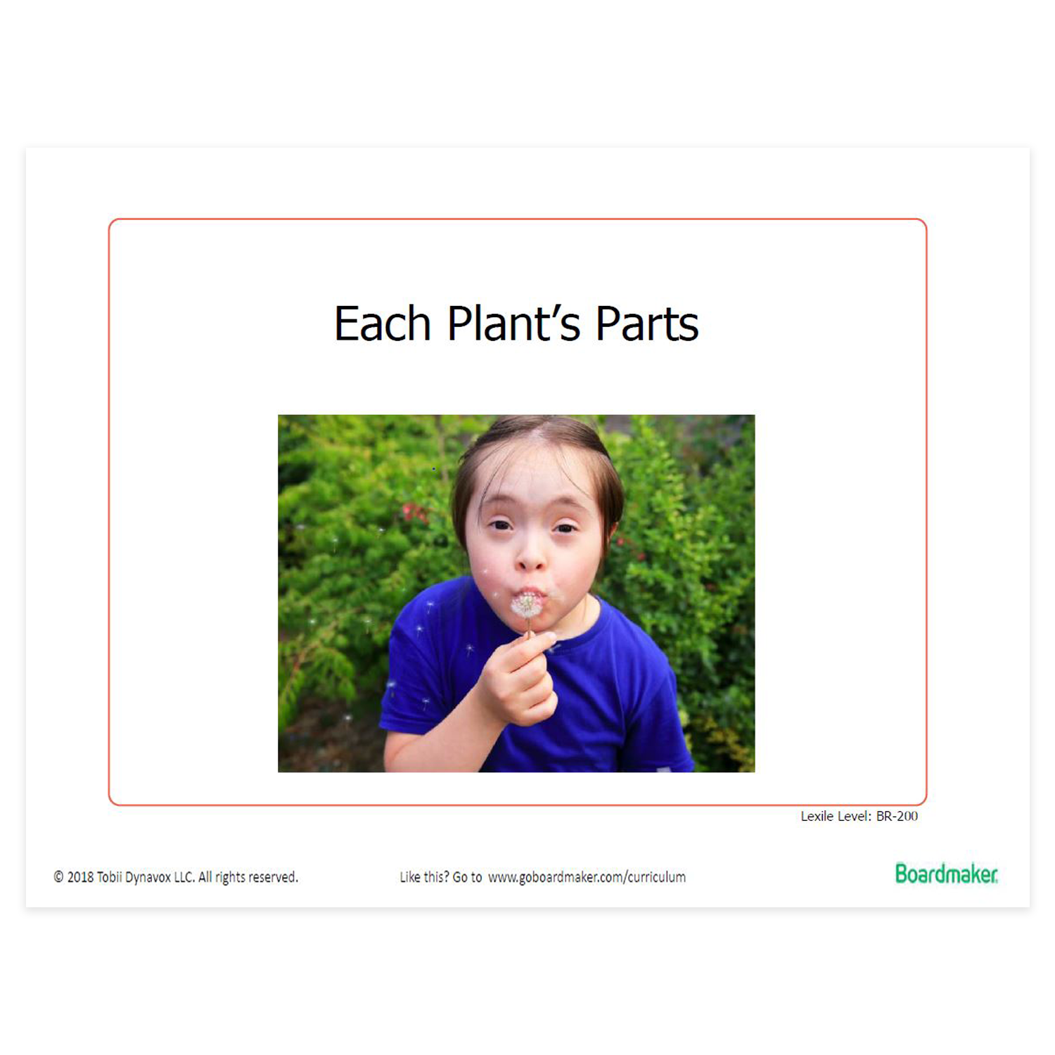 Example of Boardmaker - Each Plant's Parts
