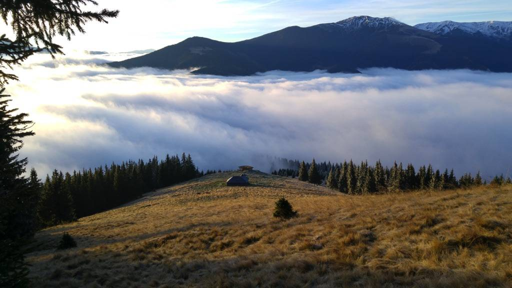 High tops of the Carpathian Mountains and location of our tree planting in Romania project