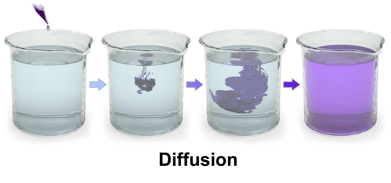 Shop Diffusion Water Pipes at DopeBoo.com