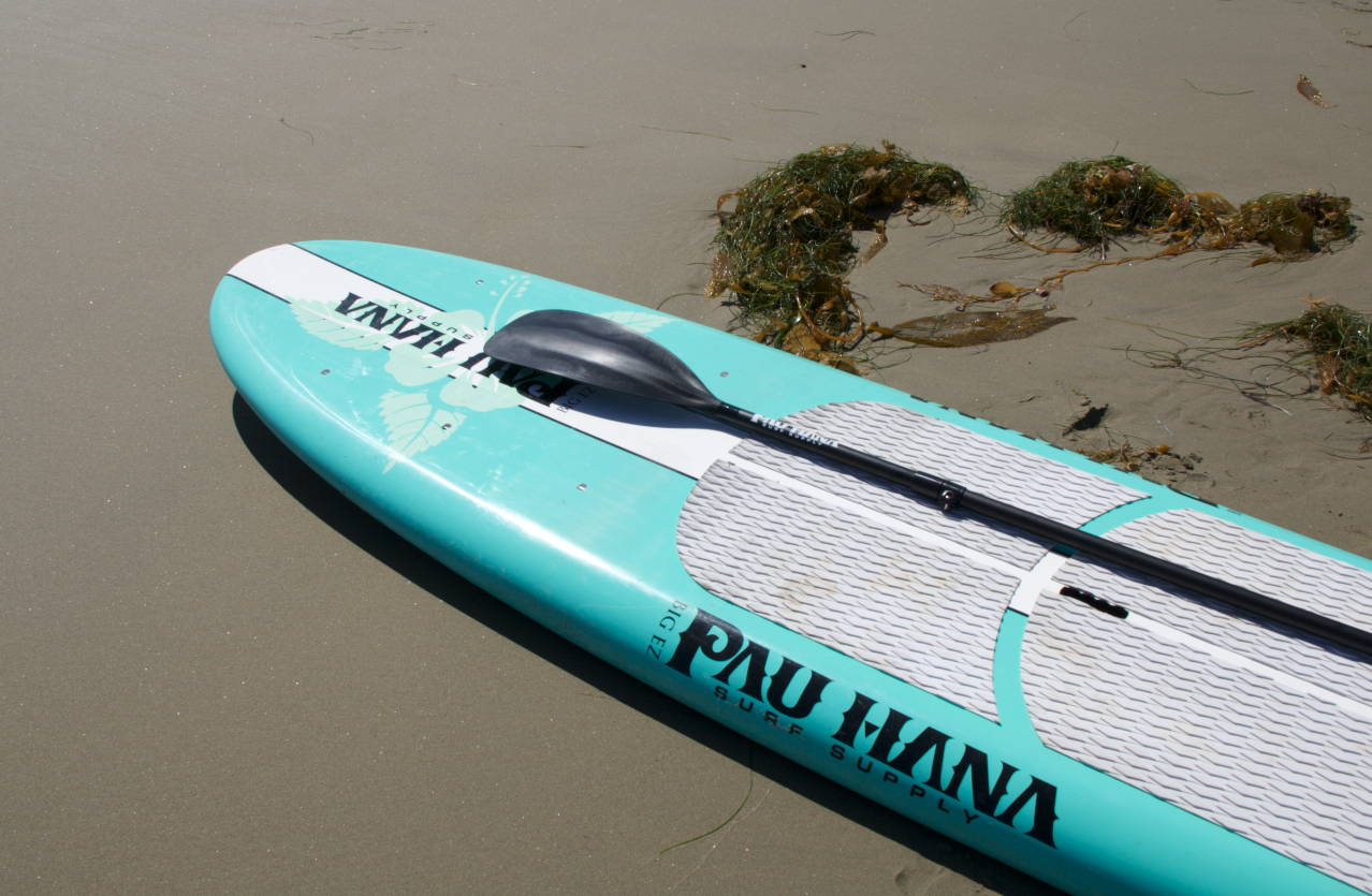 Big Ez Hawaiian by Pau Hana Surf Supply