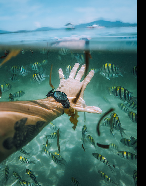 first person view of man snorkling with fish wearing watch