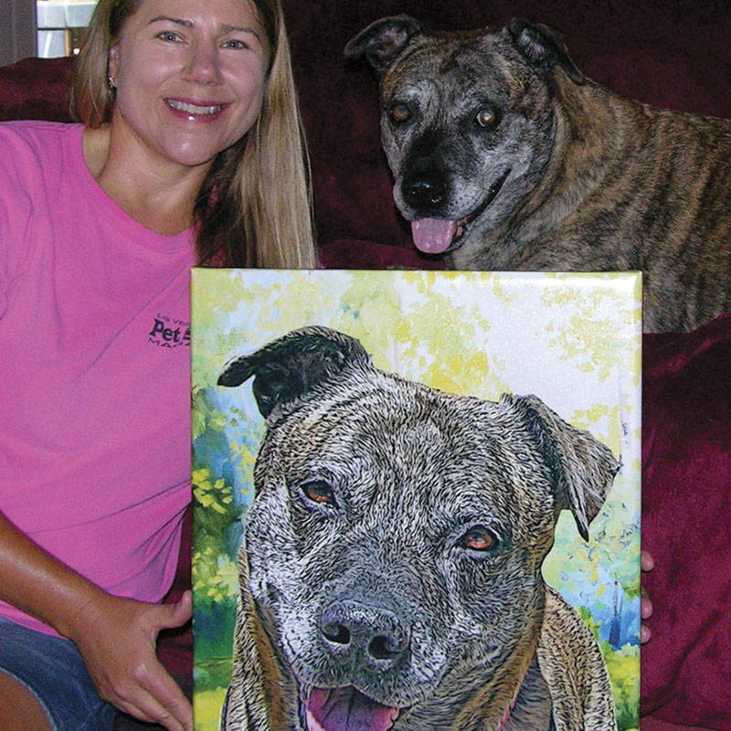 dog portrait - pitbul