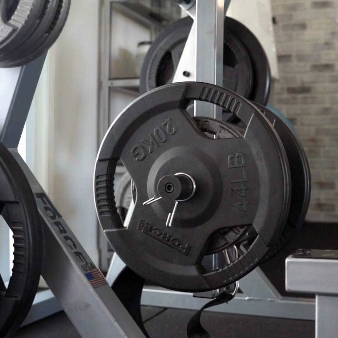 PT Studio Gym Fit Out Weight Plates