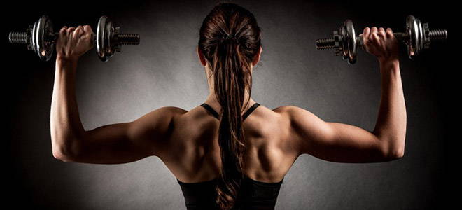 Muskeln mit Eiweiss aufbauen