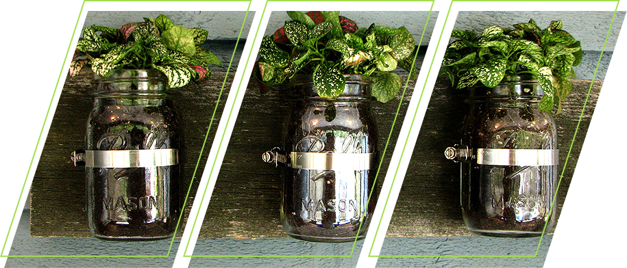 Using jar as a planter
