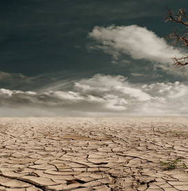 drought-destroyed-planet-harmful-foods-for-environment