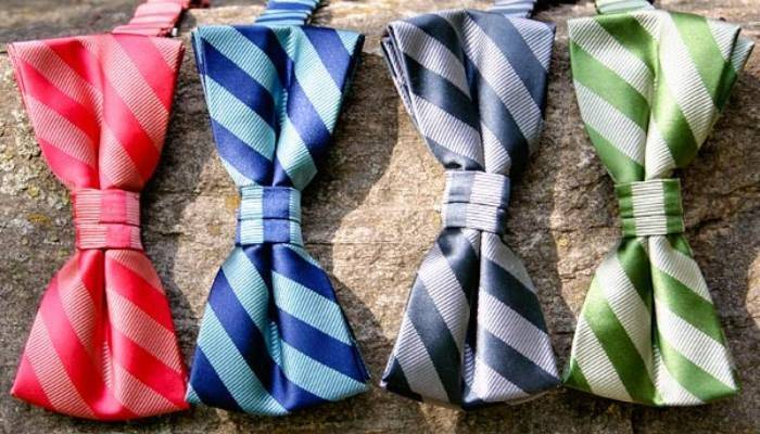 Colorful striped bow ties on rock