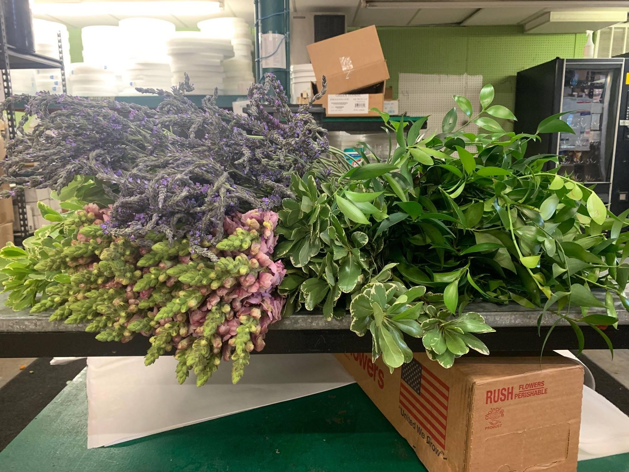 Nagi, mauve snapdragons, fresh lavender flower