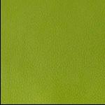 Lily Pad Shore Fabric