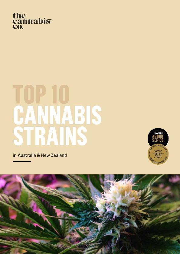 Top 10 Cannabis Strains in Australia & New Zealand