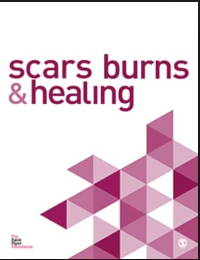 Scars Burns & Healing Cover