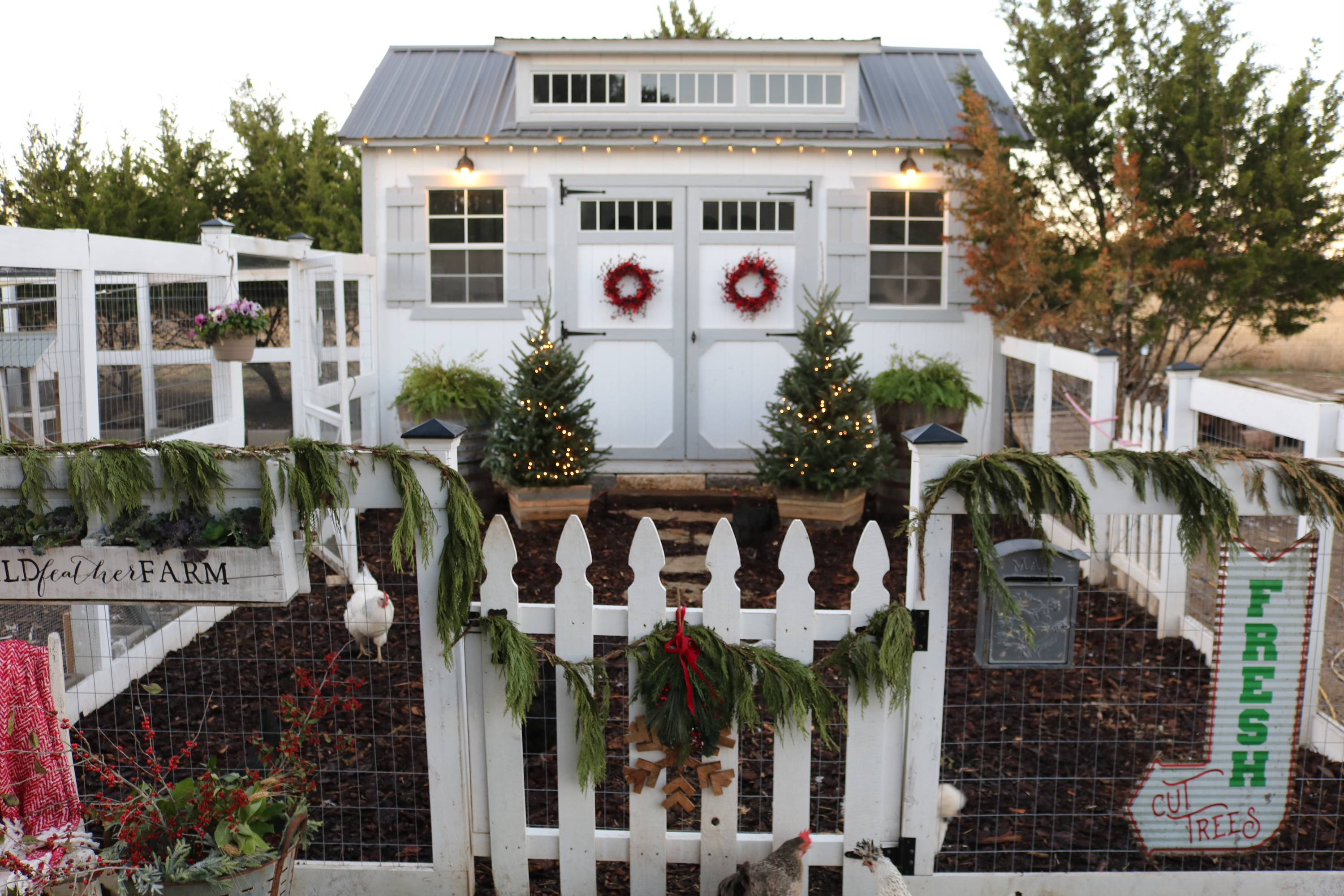7 Ideas for your Holiday Coop