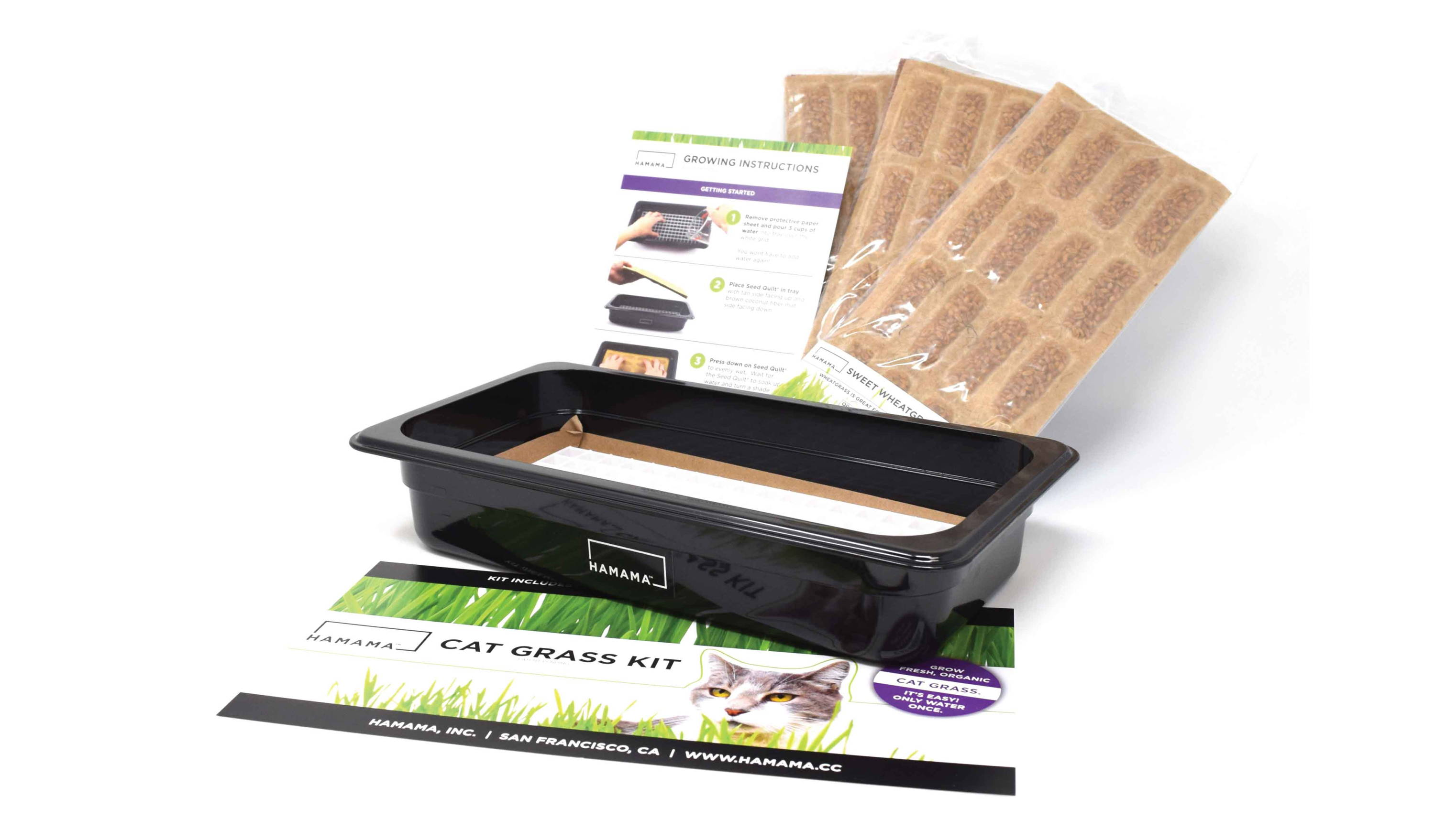 Cat grass kit for growing organic cat grass at home.  Includes grow tray, instructions, and three cat grass wheatgrass Seed Quilts