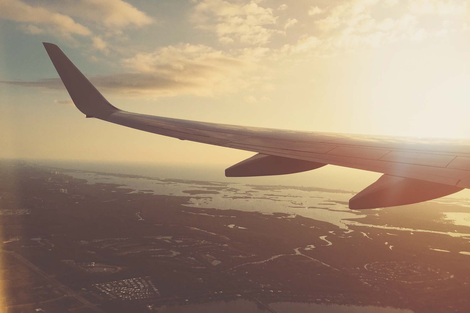 What You Need To Know About Flying With CBD Oil | Anavii Market