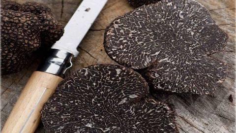 what is australian truffle