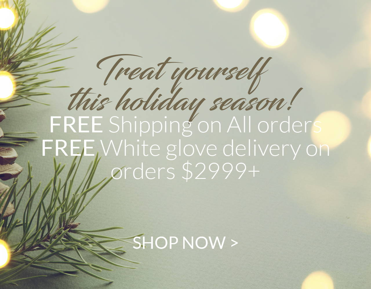Treat yourself this holiday season! Free Shipping on All orders. Free white glove delivery on orders $2999+
