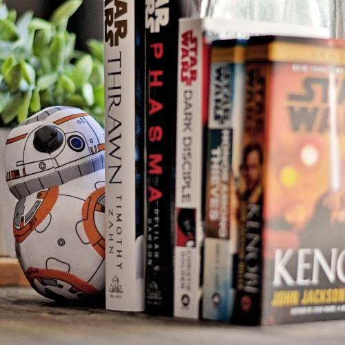 BB8 and  Star Wars Books