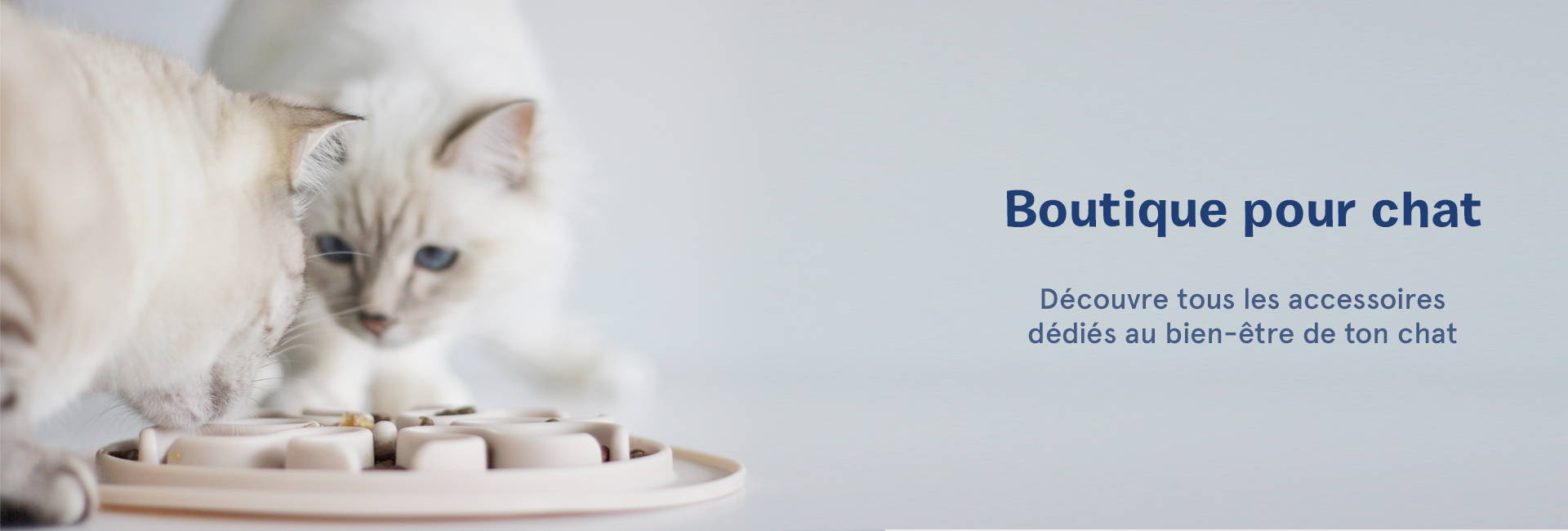 inooko-boutique-francaise-pour-chat